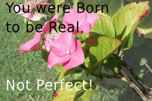 You were Born to be Real, Not Perfect!